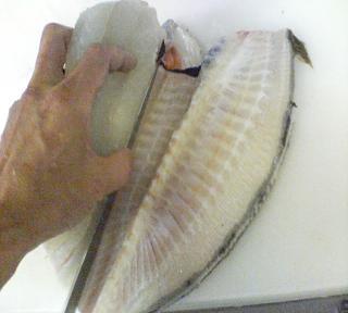 方 刺身 捌き ヒラメ